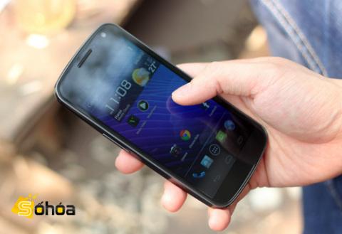 """Galaxy Nexus là """"con cưng"""" của Google. Ảnh: Tuấn Anh."""