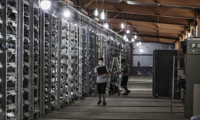 Nỗi ám ảnh Bitcoin của người buôn 'trâu cày'